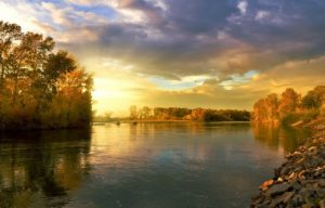 Autumn Landscape Nature Golden  - Larisa-K / Pixabay
